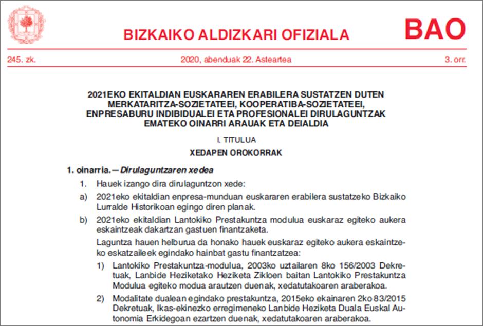 BFA_LP_Duala_dirulaguntza_2021_deialdiaren laburpena